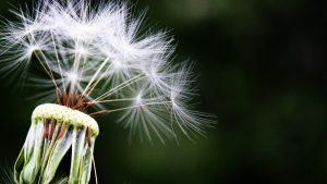 Kako da saznate da li ste alergični na nešto? 2