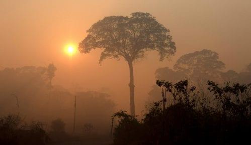 Bolsonaro: Mediji lažu o požarima u Amazoniji 4