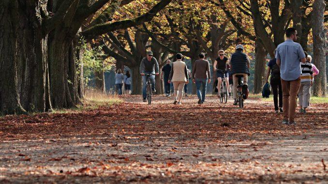 Za nama je najtoplija jesen u Srbiji od kako se vrše merenja 1