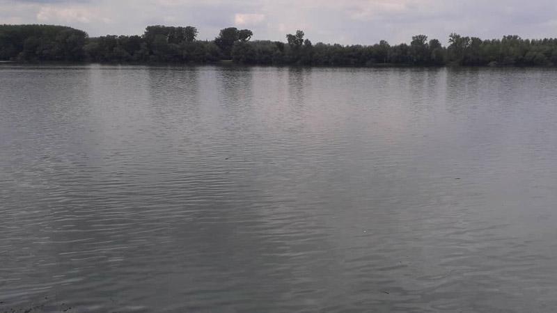 Udruženje Ekomar iz Kragujevca traži zaštitu ekosistema jezera Bubanj 1