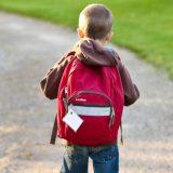 Preporuke Ministarstva prosvete: Nastavnici prvo da dele petice 7