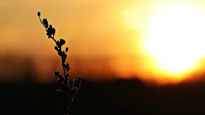 Većvidljiveposlediceklimatskihpromena 2