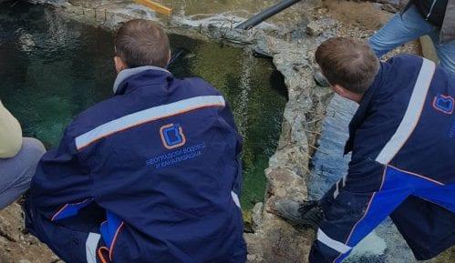Slučaj vodovod: Posle 11 godina na povremenim poslovima Sud naložio ugovor na neodređeno 6