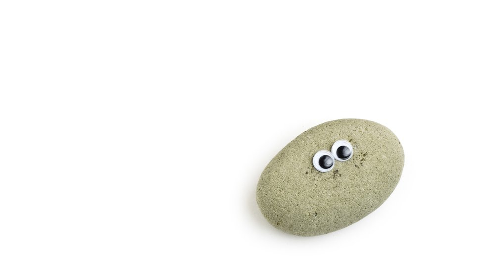 A replica of the 1970s pet rocks with goggly eyes