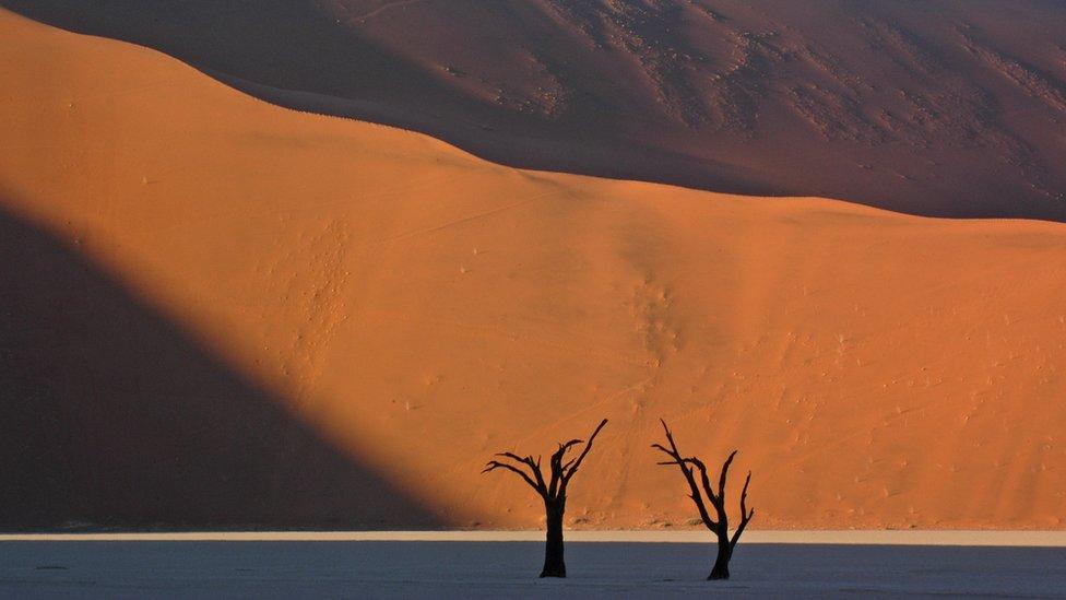Sand dunes in the Namibian desert