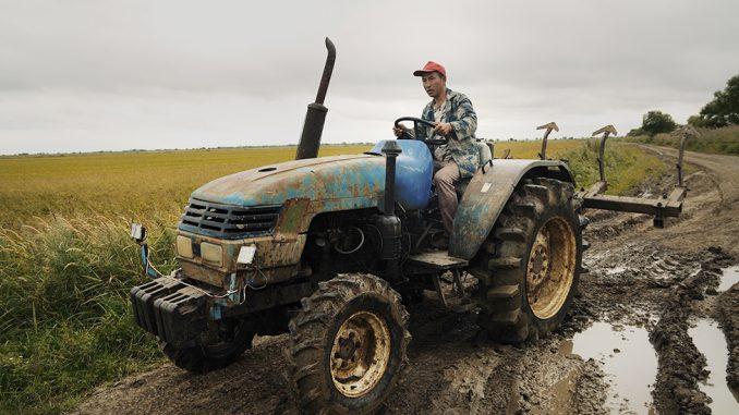 """""""Kinezi će otići i sve će da zaraste u korov"""": Kako zemljoradnici iz Kine osvajaju ruski Daleki istok 3"""
