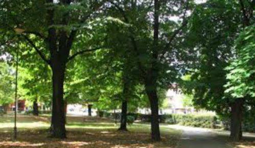 Ne dozvoljavaju seču stabala i betoniranje travnjaka 11