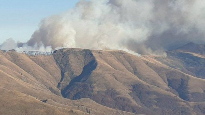 Marić: Sva raspoloživa sredstva na terenu i gase požar na Staroj planini (VIDEO) 4