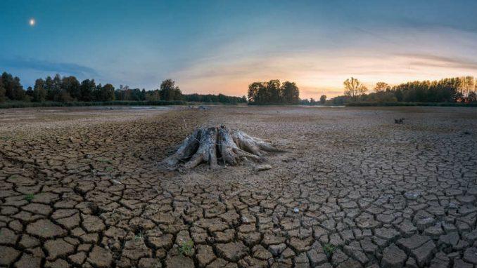 Kako urednici Gardijana temama skreću pažnju na klimatske promene? 1