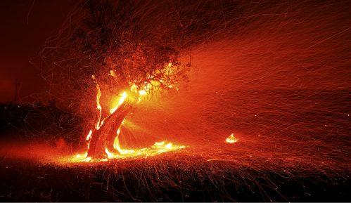 U Kaliforniji evakuacija stanovništva zbog šumskih požara 8