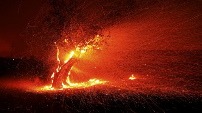 Zbog požara na jugu Kalifornije izdato ekstremno upozorenje sa crvenom zastavom 2