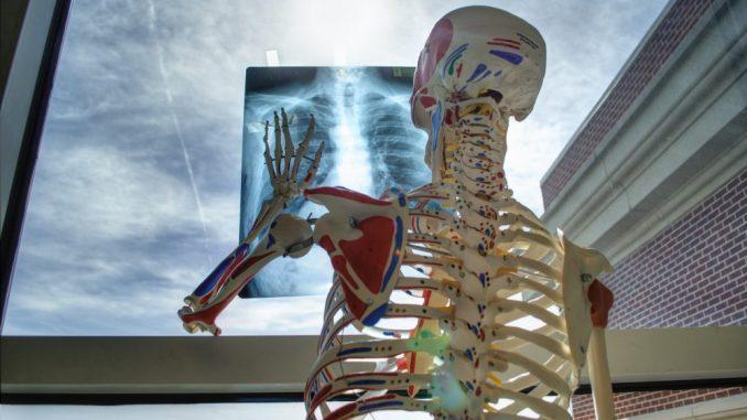 Pregled za otkrivanje osteoporoze koji se ne preporučuje trudnicima 4