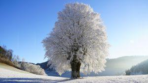 Da li nas očekuje malo ledeno doba? 3