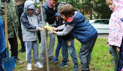 Stanari Zvezdare sadili nova stabla, neće parking u parku 6