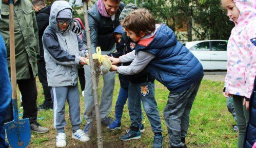 U akciji Posadi svoj hlad na Zvezdari biće posađeno 600 sadnica belog jasena 4