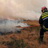 Lokalizovani šumski požari kod Rutoša i Nove Varoši 3