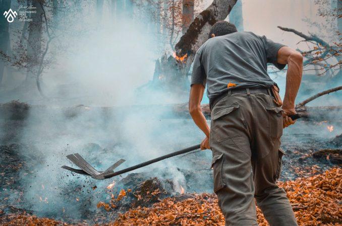 Požar na Staroj planini: Meštani Toplog Dola - tihi heroji u borbi protiv vatre 3