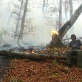 Vatra gori, a Džentlmen godine - ćuti 11