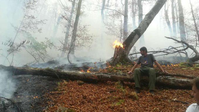 Vatra gori, a Džentlmen godine - ćuti 1