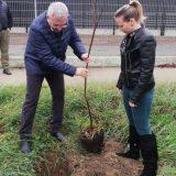 Titel sadi 16.000 stabala, po jedno drvo za svakog stanovnika 14