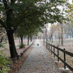 Kako izgleda Ada Ciganlija u jesenjem periodu? (FOTO) 7