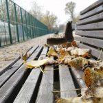 Kako izgleda Ada Ciganlija u jesenjem periodu? (FOTO) 4