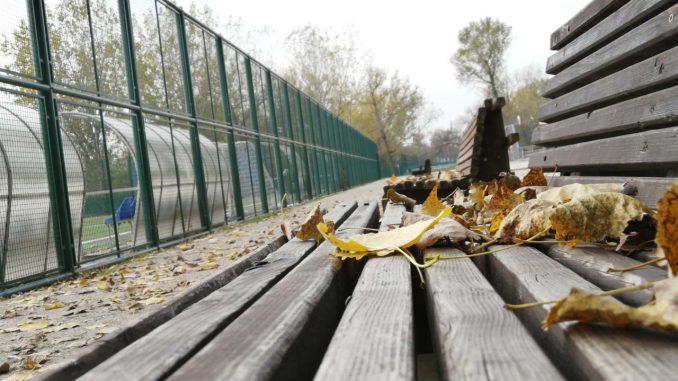 Kako izgleda Ada Ciganlija u jesenjem periodu? (FOTO) 1