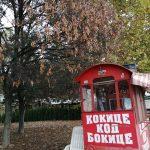 Kako izgleda Ada Ciganlija u jesenjem periodu? (FOTO) 5