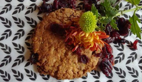 Kuki sa brusnicamai ovsenim pahuljicama (recept) 7