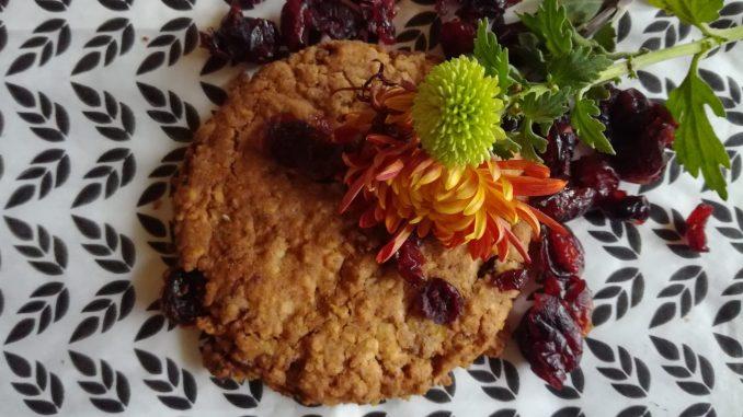 Kuki sa brusnicamai ovsenim pahuljicama (recept) 6