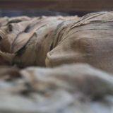 Naučnici rekreirali glas mumije stare 3.000 godina 15