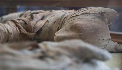 U Egiptu otkrivene mumije životinja 6