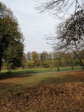 Kako izgleda Ada Ciganlija u jesenjem periodu? (FOTO) 8