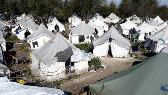Na Vučjaku čišćenje terena, građani Blažuja najavljuju proteste zbog dolaska migranata 2