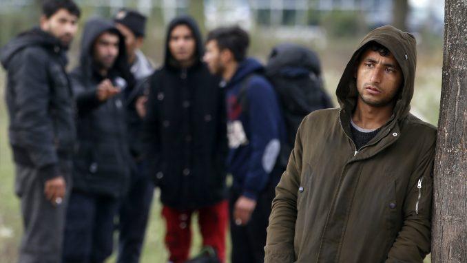 Policija BiH vraća migrante u Srbiju 2