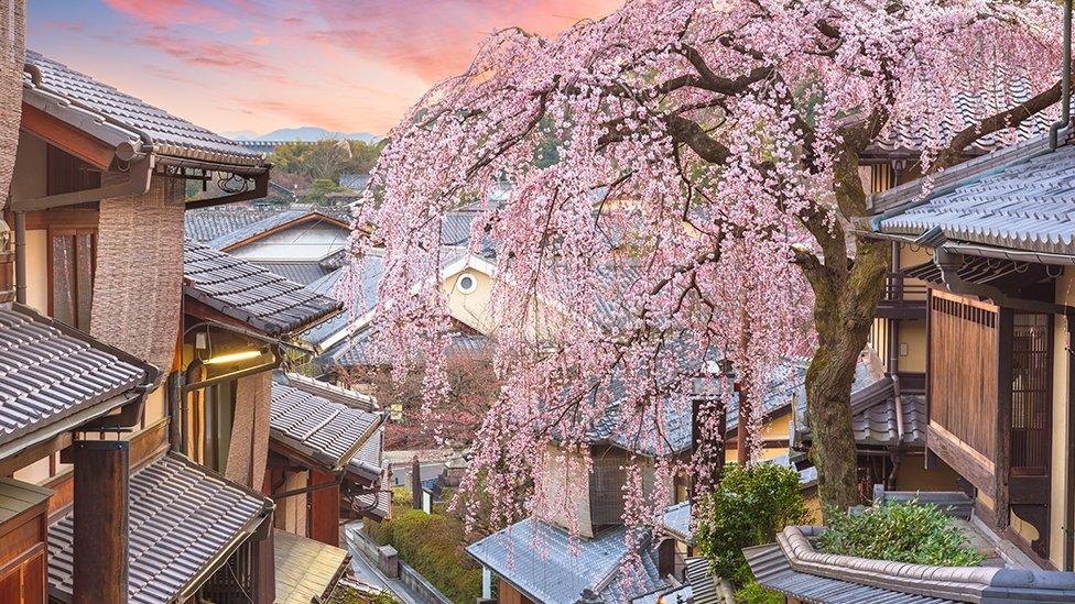 Kjoto