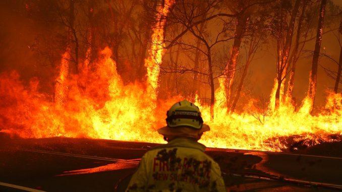 Požari u Australiji: Hiljade dobrovoljaca u borbi protiv plamena 2