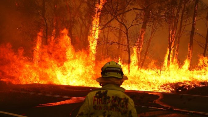Požari u Australiji: Hiljade dobrovoljaca u borbi protiv plamena 3