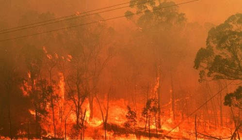 Žestok požar na obali Francuske, turistički kampovi evakuisani 2