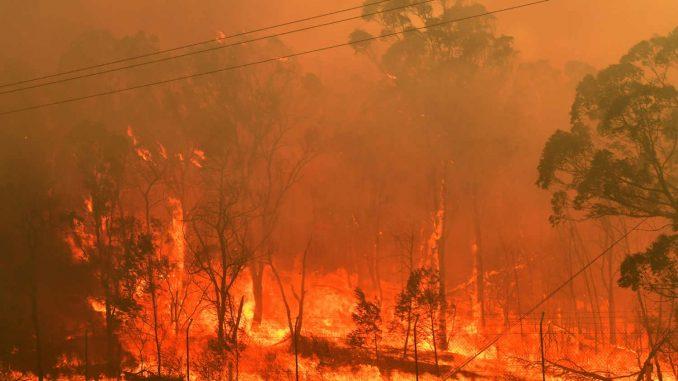 Novi temperaturni rekordi u Australiji 3