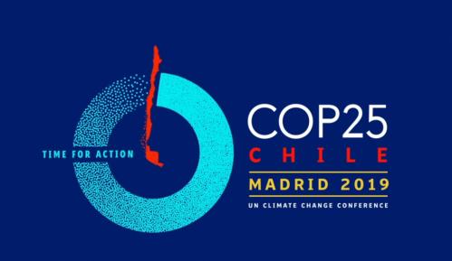 Samit u Madridu – još jedna propuštena prilika? 13