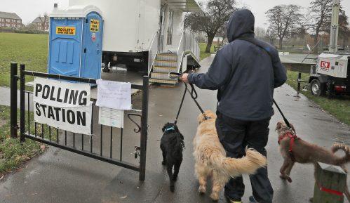 Britanci na glasanje doveli pse, mačke, konje, doneli morske prasiće (FOTO) 4
