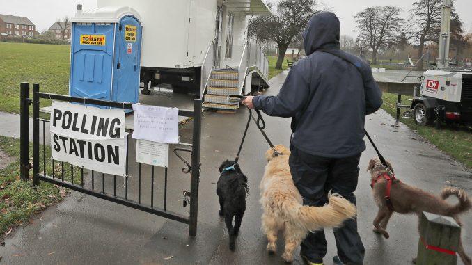 Britanci na glasanje doveli pse, mačke, konje, doneli morske prasiće (FOTO) 2