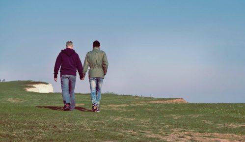 Manje od milion domaćinstava istopolnih parova u SAD prošle godine 15