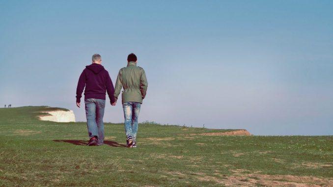 Manje od milion domaćinstava istopolnih parova u SAD prošle godine 2
