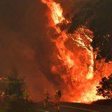 Više od 120 kuća uništeno u požaru u Čileu 13