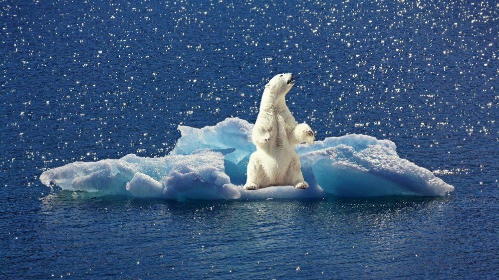 U kom trenutku bi Severni ledeni okean mogao da ostane bez leda? 2