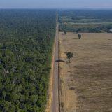Udvostručeno uništavanje prašuma Amazonije 2