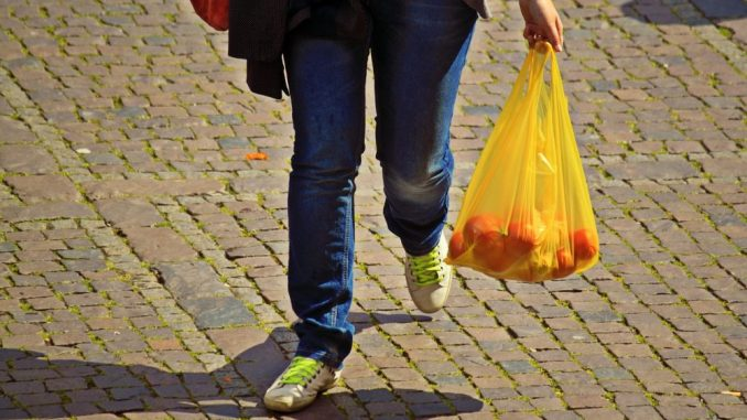 Nemačka zabranila plastične kese 2