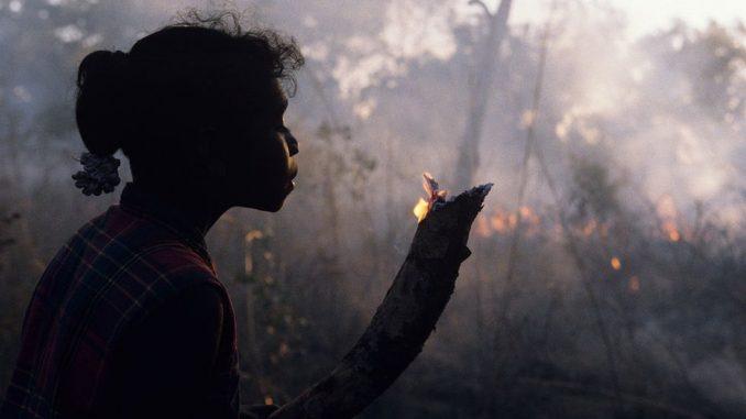 """Požari u Australiji: Aboridžani kažu da """"rastinje mora da gori"""" 2"""